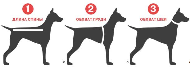 мерки размеров одежды для собаки